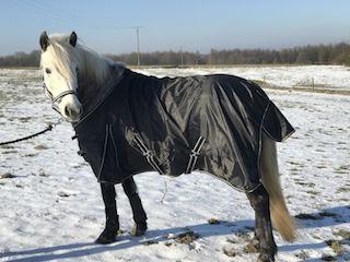 FATANO Regendecke Weidedecke light ohne Fleece 600D schwarz 125 cm - 155 cm P20
